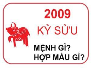 Sinh năm 2009 mệnh gì? hợp màu gì?